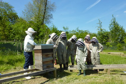 events_beekeeping