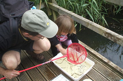 pond_dipping